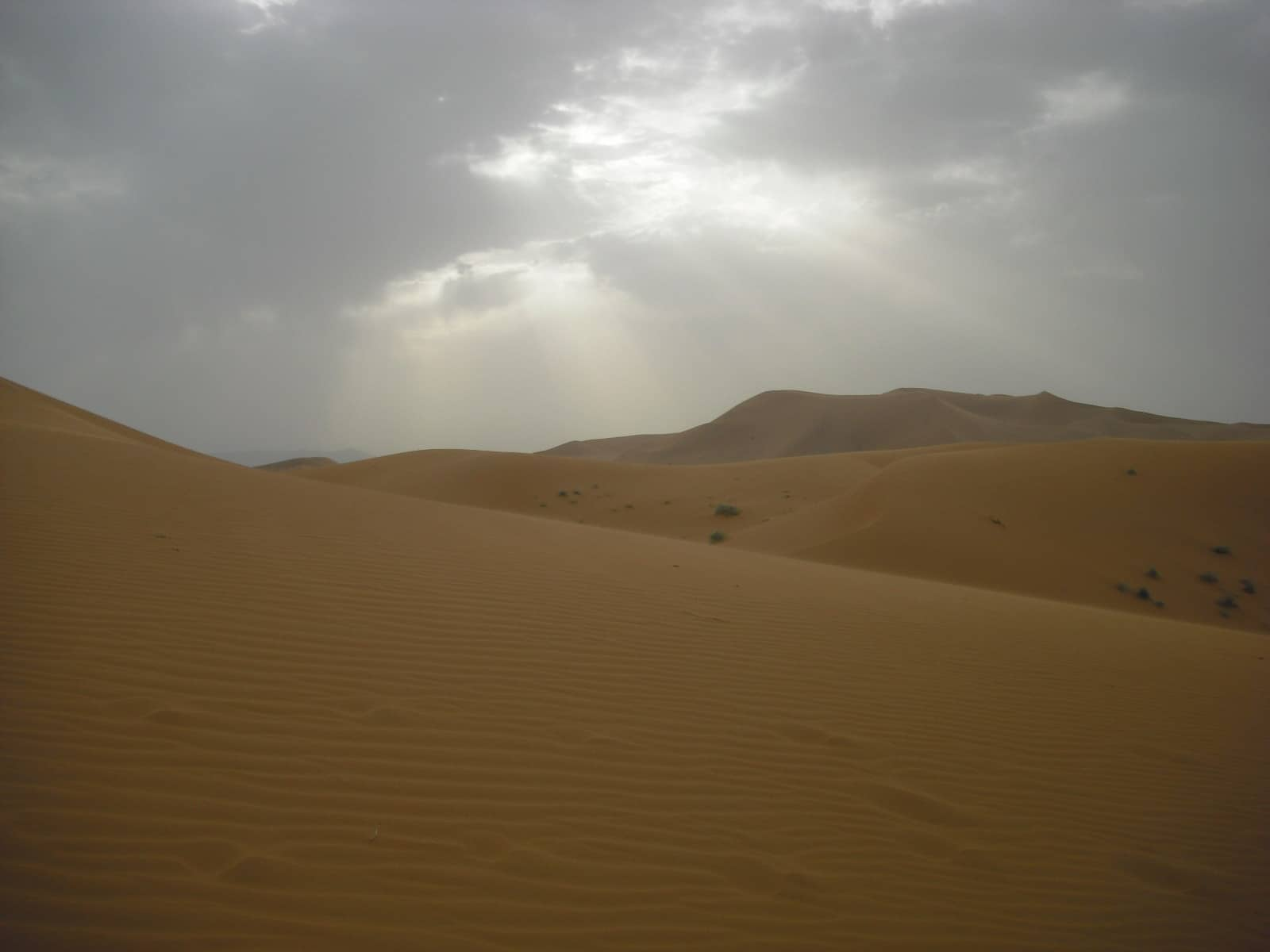 the sands of merzouga, morocco