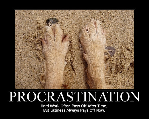 procrastination with an important sentence