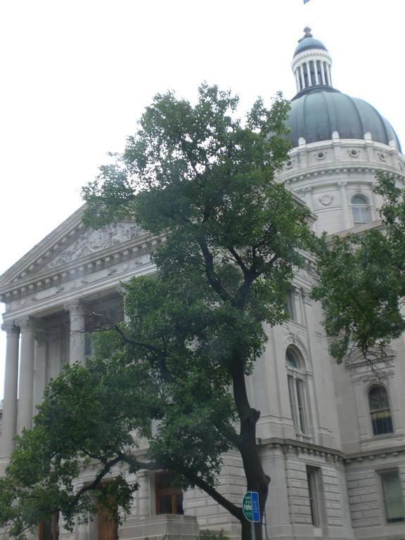 Indianapolis city hall