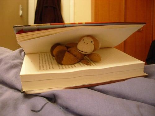 book monkey